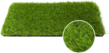 grass example
